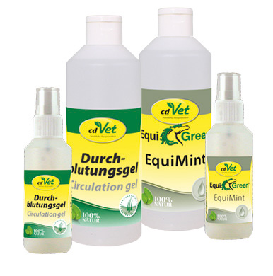 EquiMint Gruppe